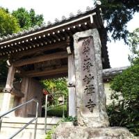 鎌倉散歩 ~浄妙寺~