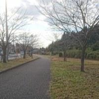 四季の道~かずさの道~刈田子公園