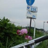 天狗の輪行:団塊オッサンの座長が「原発引揚げ者の楢葉町」を自転車探訪する!