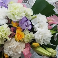 2月22日 明日の誕生花・ゆかりの花 花言葉は?(*^O^*)☆