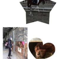 今日の乗馬⛄️