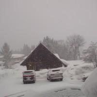 雪降り白馬、、