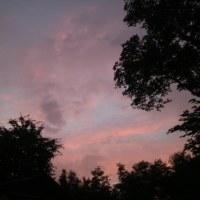 雨の後の夕焼け