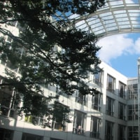 大学合格実績の冷静な見方 開成高校の場合