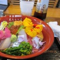 花チラシ  春咲き花ちらし寿司