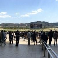福島競馬観戦