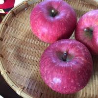 奥さんの親戚からリンゴが送られてきました。とても甘く美味しいです。