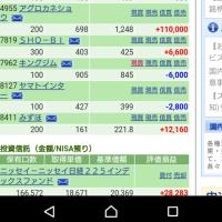 モニター当選オムツ来た\(^o^)/12/9の株の結果