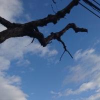 紺から水色、レミオロメン、小椋佳