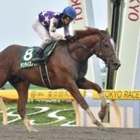 函館SSは今年も3歳牝馬が勝利!ユニコーンステークスはサンライズノヴァ圧勝!
