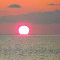 ダルマの太陽