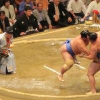 平成29年 大相撲夏場所 四日目 両国国技館観戦