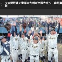 熊本弁日記(^_^)~東海大野球部優勝!