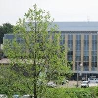 新市庁舎見学会