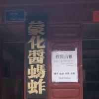 雲南省の昆虫食イナゴ