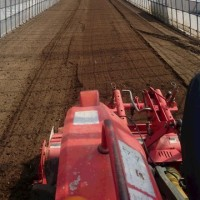 トマト定植準備
