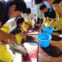 漁場調査3日目