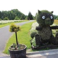 花の庭(3)