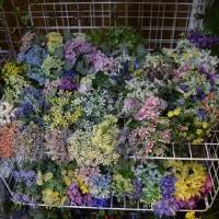 ココーフラワー横浜ショールーム  一輪の単品造花から花束やピックまで品揃え多数