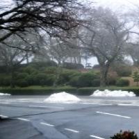 霧の冨士霊園