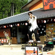 かぶちゃん村で夏休みをどうぞ!