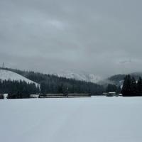 米どころの冬 大地に浸み入る雪