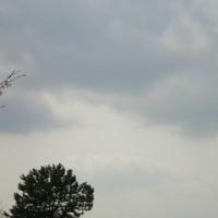雲の写真2 「雲観察」