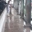 恵みのひと雨!