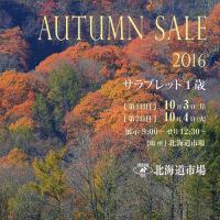 【オータムセール2016(Autumn Sale、1歳)】の「事前公開資料」が発表!