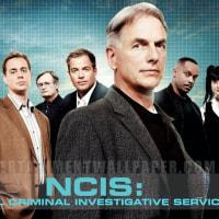 NCIS ネイビー犯罪捜査班  6×3 秘密の恋人 などで何故か出てくる「ぶちこめ、〇〇」