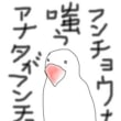夢の羅列<文鳥設定> 20170628