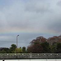 京都、鴨川デルタ