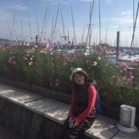 強風の江ノ島で 散歩♪