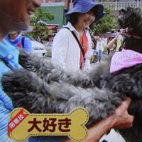 軽井沢に ドラ・ココが・・・