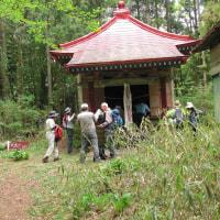 七ツ森・笹倉山(大森山)登山日記