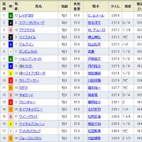 [東京優駿(G1)]ドスローダービーを制したのはC.ルメール騎手!
