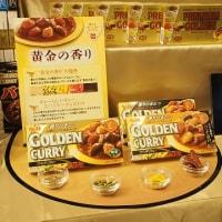 【第53回RSPin品川】ヱスビー食品 ゴールデンカレー シリーズ