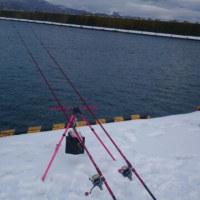 2月の投げ釣りは厳しい!