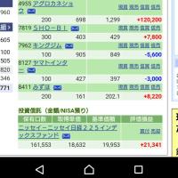 家の庭耕し作戦 11/28の株の結果