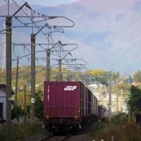 秋景色の勾配を下るEF510-510