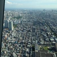 せっかく東京に来たのだから。