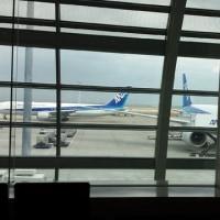 今、羽田空港です。