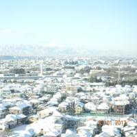 暫くぶりの東京での雪