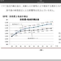 奈須りえはこう考える「セイフティーネットにしてほしい平成29年度大田区各会計予算予算」
