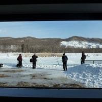 釧路の旅 3日目 阿寒国際ツルセンターへ♪