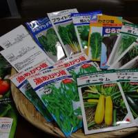 夏野菜の種が届き始めた