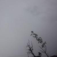 仙台の空12月6日