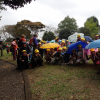 岩本山観察会:雨の中でも記念写真をしました。