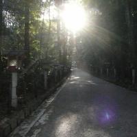 ☆ 大神神社 (3度目)☆