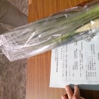 相武台地区の市民レクリエーション大会/永年党員を祝う会!10月23日(日)のつぶやき